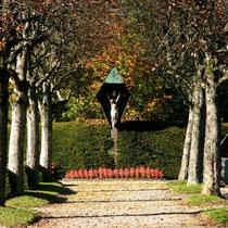 Motiv 5 - Friedhof Titisee - Bild 1