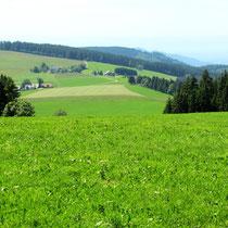 Blick v.d. Eckershöhe