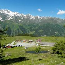 Auf der Alpe zurück