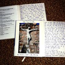Meine Tagebücher