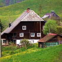 Motiv 10 - Bauernhof im Oberaltenweg