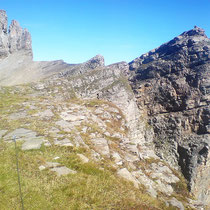 Schafbergplateau - 2522 M