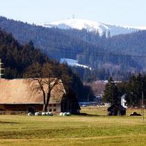 Motiv 7 - Schlegelhof, Felberg 1494 M