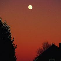Motiv 9 - Nächtlicher Mondaufgang