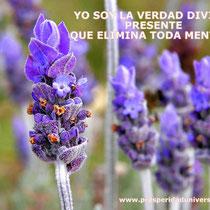 YO SOY ,EL PODER - PROSPERIDAD UNIVERSAL- www.prosperidaduniversal.org