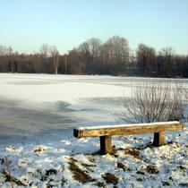 Etang de Remiencourt l'hiver