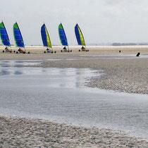 Chars à voile en baie de Somme