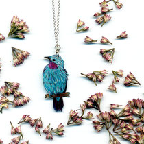 Vogelzeichnung an Silberkette • Schmuckvogel #02 -|| Turquoiseblue breasted cotinga #02 • silver necklace with hand-drawn bird pendant