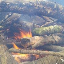 Feuer machen an der Brätlistelle