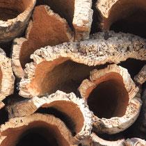 Monchique  Portugal's famous cork 2019