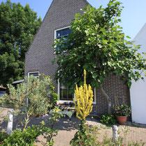 Durgerdam 2009 - bestelnr. 2009054