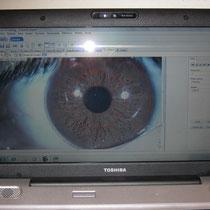 Software computacional iris
