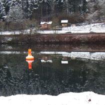 Der Neckarbogen liegt schon im Schatten: Kaum Vögel zu sehen    Bild: PeWe
