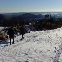 Kalte Wintersonne - nur in der Ferne das dampfende Kraftwerk bei Heilbronn   Foto pewe