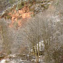 Eine Felswand an der gerne Wanderfalken ihre Jungen erbrüten (bisher ca. 100)    Bild: PeWe