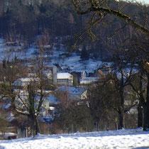 Waldhilsbach zwischen Wald und Wiesen   Foto pewe