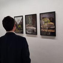 Exposition à la Galerie Umcebo à Paris