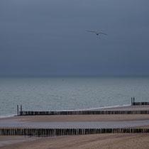 Northern Beach - 2