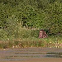 Tarnzelt am Rand eines Teiches