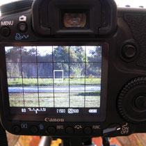 Live-View Ansicht