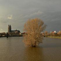 Hochwasser März 2006