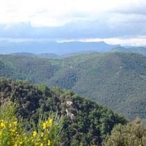 Blick über den Montseny