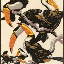 NORBERTINE BRESSLERN-ROTH, Pfefferfresser, (Riesentukane), Linolschnitt, 26,6x22,9cm (Druckgröße), 1928