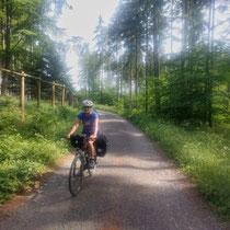 Schattiger Radweg in Tschechien