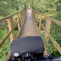 Über die wackelige Hängebrücke