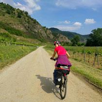 Radeln in der Wachau