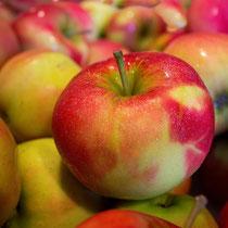 Neue-/Alte Apfelsorten