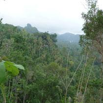 Landschaft Bali