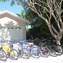 Marco Island Ferienhaus Fahrräder