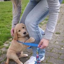 12.04.10 Bruno seine erste große Reise