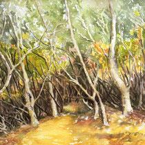 """Wald auf Teneriffa"", Aquarell, 42 * 36 cm"