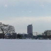 河川敷野球場と群馬県庁