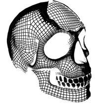 Skull head 3D