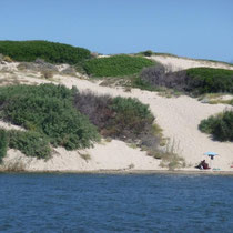 Dünenlandschaft vor dem CP La Foce