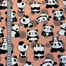 J-080 Panda lachs