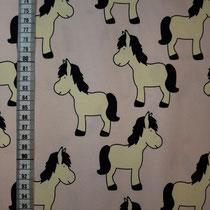 J-049 Pony rosa