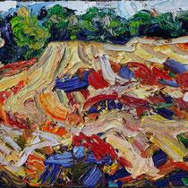 Feld bei Bliesen, Öl/Lw 40 x 50 cm, 2019