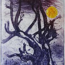 """Strandbaum"", Radierung, Aquatinta, Kaltnadel, Prägung, ca 25 x 20 cm"