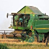 Agrar/Gartenbau