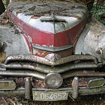 patina · #auto_skulpturen_park_neandertal · 2014-07-20-256 · yak © 2014 RK