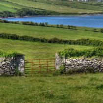 · foto-kunst-kalender 2016 · irland · juli · yak © 2015 RK