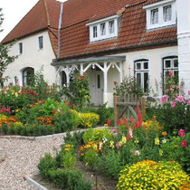 Sommerblumengarten