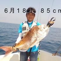6月18日 85cm