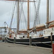 Auf Entdeckungsreise im Hafen von Hvide Sande. Foto: J.Auer