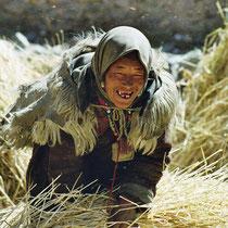 Frau beim Ernten in Mustang, Nepal