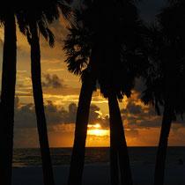 Sonnenuntergang, Florida